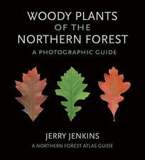 Woody Plants of the Northern Forest:: Woody Plants of the Northern Forest: