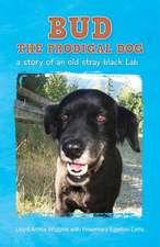 Bud the Prodigal Dog