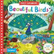 Beautiful Birds