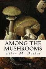 Among the Mushrooms