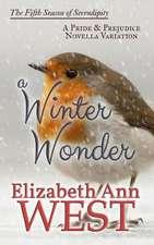 A Winter Wonder