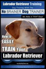 Labrador Retriever Training Dog Training with the No Brainer Dog Trainer We Make It That Easy!