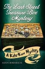 The Lark Street Treasure Box Mystery:  Aspiring Young Authors