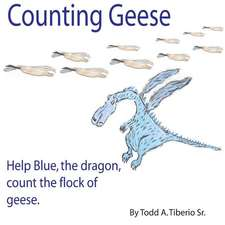 Counting Geese: Help Blue, the Dragon, Count the Flock of Geese.