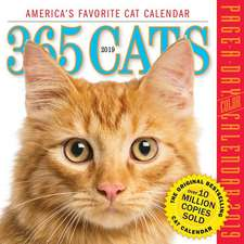 365 Cats 2019 Page-A-Day Calendar