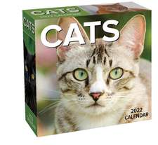 Cats 2022 Day-to-Day Calendar