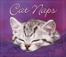 CAT NAPS B 2020