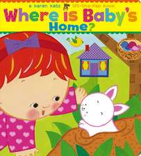 Where Is Baby's Home?