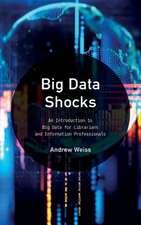 Big Data Shocks