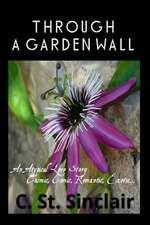 Through a Garden Wall