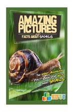 Amazing Pictures and Facts about Snails