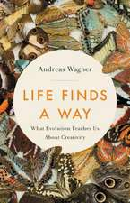 Life Finds a Way: What Evolution Teaches Us About Creativity