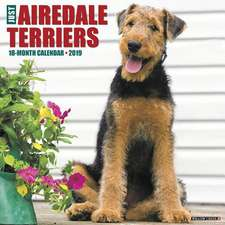 2019 Just Airedale Terriers Wall Calendar (Dog Breed Calendar)