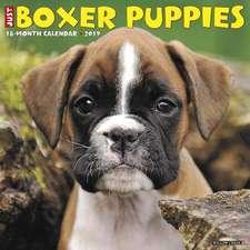 2019 Just Boxer Puppies Wall Calendar (Dog Breed Calendar)