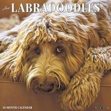 2019 Just Labradoodles Wall Calendar (Dog Breed Calendar)
