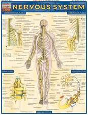 Nervous System Laminate Reference Chart