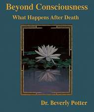 Beyond Consciousness:  What Happens After Death