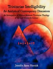 Trinitarian Intelligibility - An Analysis of Contemporary Discussions