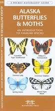 Alaska Butterflies & Moths: A Folding Pocket Guide to Familiar Species