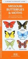 Missouri Butterflies & Moths: A Folding Pocket Guide to Familiar Species
