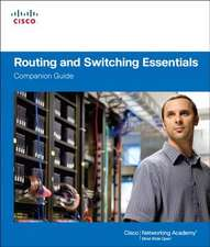 Routing and Switching Essentials