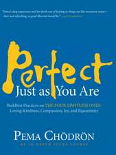 Perfect Just as You Are:  Loving-Kindness, Compassion, Joy, and Equanimity