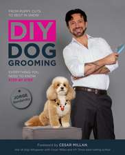 DIY Dog Grooming:  Everything You Need to Know Step by Step