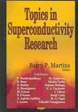 Topics in Superconductivity Research
