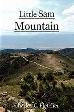 Little Sam Mountain