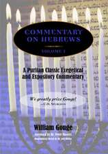 Commentary on Hebrews:  Exegetical & Expository - Vol. 1 (PB)