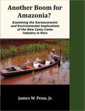 Another Boom for Amazonia?