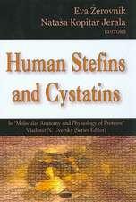 Human Stefins and Cystatins
