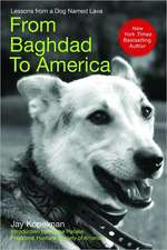 From Baghdad to America:  Life After War for a Marine and His Rescued Dog