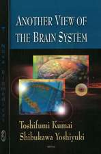 Another View of the Brain System