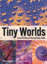 Tiny Worlds: Creative Macrophotography Skills