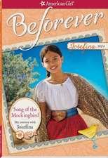 Song of the Mockingbird:  My Journey with Josefina