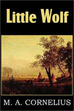 Little Wolf, a Tale of the Western Frontier