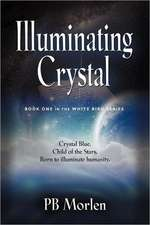 Illuminating Crystal - Book One in the White Bird Series