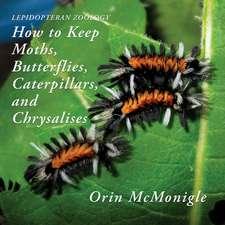 Lepidopteran Zoology