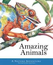 Amazing Animals:  A Nature Adventure