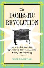 The Domestic Revolution – How the Introduction of Coal into Victorian Homes Changed Everything
