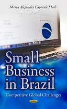 Small Business in Brazil: Competitive Global Challenges