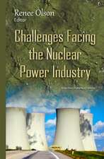 Challenges Facing the Nuclear Power Industry