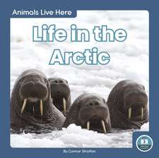 Life in the Arctic