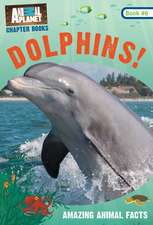 Dolphins! (Animal Planet Chapter Book #6)