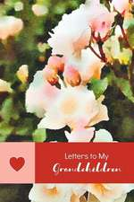 Letters to My Grandchildren: A Grandmother