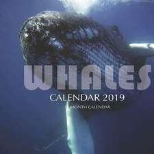 Whales Calendar 2019: 16 Month Calendar