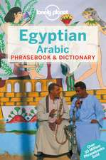 Lonely Planet Egyptian Arabic Phrasebook & Dictionary:  Thinking Differently about Business