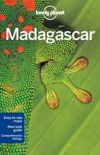 Lonely Planet Madagascar:  Experience the Best of Maui