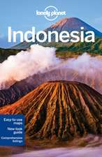 Lonely Planet Indonesia:  101 Skills & Experiences to Discover on Your Travels